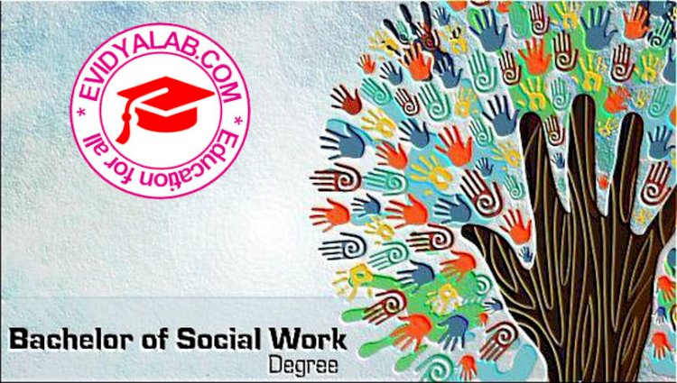 Bachelor of Social Work - BSW